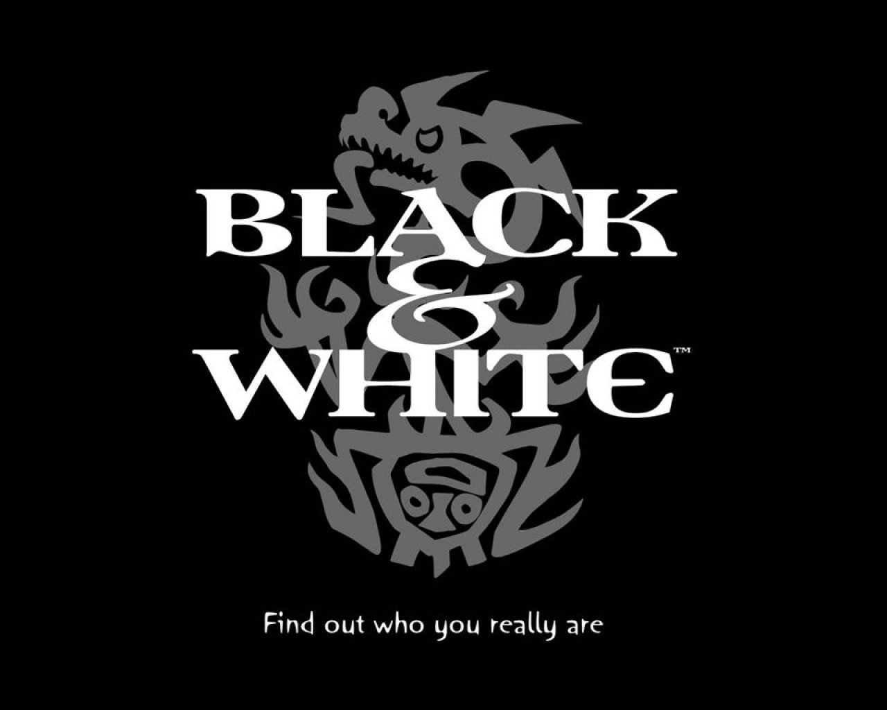 black_and_white_promo_poster