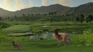 wildlife09-1024x576