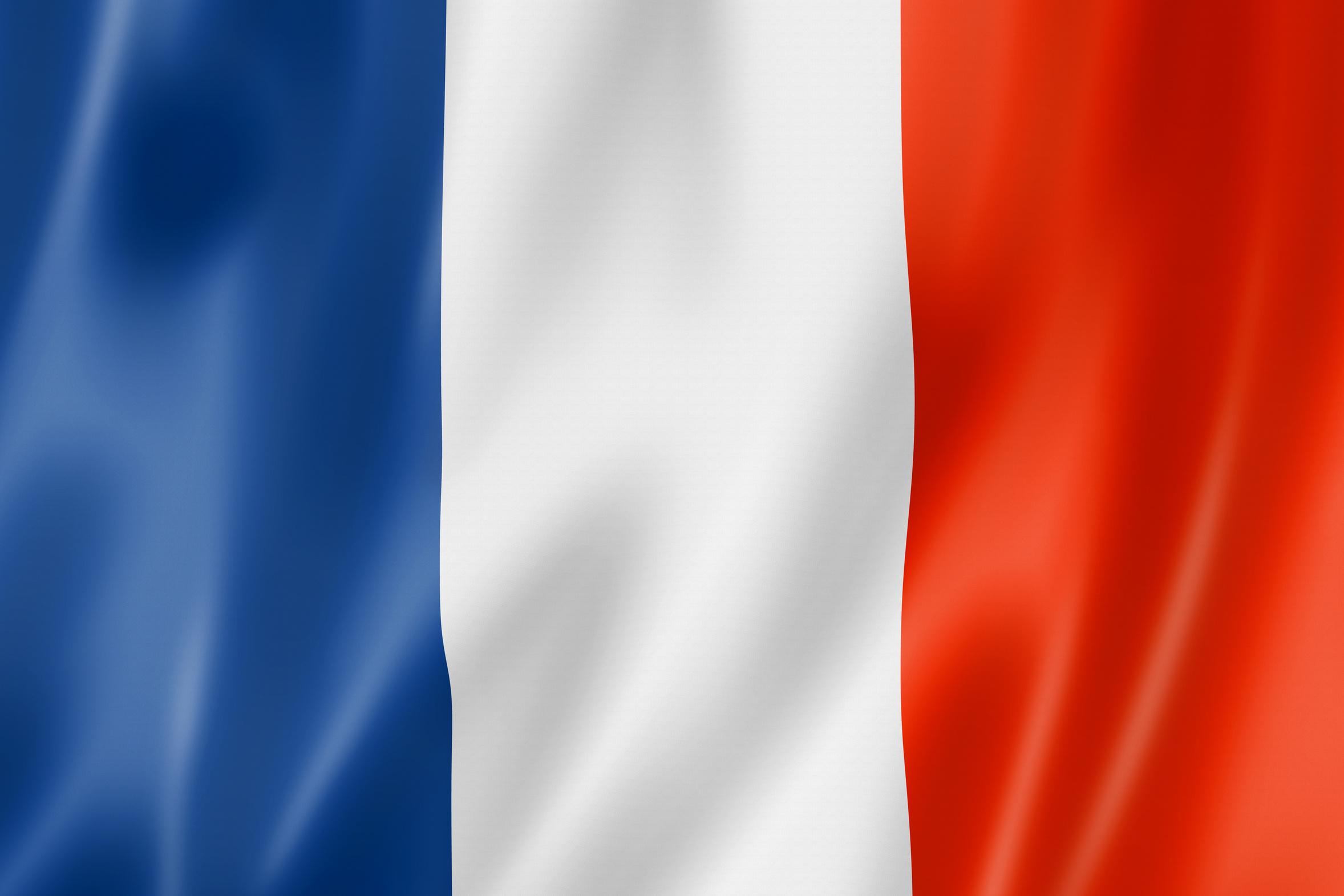 french_flag_artwork